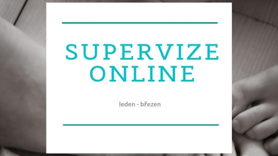 supervize jaro 2021 web